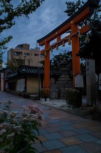 藤袴祭~寺町通・下御霊神社 - 鏡花水月