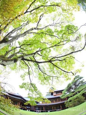 日光田母沢御用邸記念公園 秋の音楽祭 ~小督~ - 日々の贈り物(私の宇都宮生活)