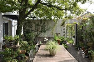 香川県高松市にあるGARDENSさんへ - バラとハーブのある暮らし Salon de Roses