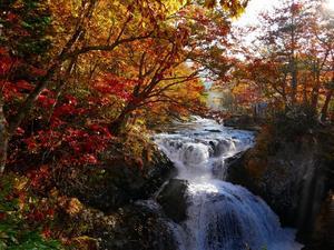 三階滝の紅葉、2019.10.21 - デジカメ持って野に山に