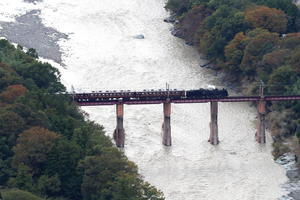 かすかに色づき始めた荒川橋梁 - 2019年秋・秩父鉄道 - - ねこの撮った汽車