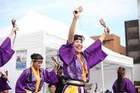 第四回横浜よさこい祭り 【4】 - 写真の記憶