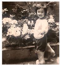 思い出写真 - 赤煉瓦洋館の雅茶子