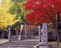 懐かしき土津神社の紅葉狩り篤人 - 渡部あつし