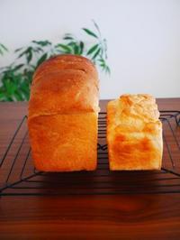 小麦のパンと米粉のパン - This is delicious !!