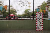 【鶴見園】運動会 - ルーチェ保育園ブログ  ● ルーチェのこと ●