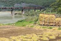 収穫の秋磐越西線VER - 蒸気屋が贈る日々の写真-exciteVer