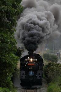 月末!1月遅れ - 蒸気屋が贈る日々の写真-exciteVer
