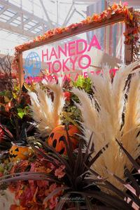 ■羽田空港新国際線旅客ターミナル■ - TOCHIGI FOUR SEASONS