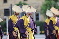 横浜よさこい祭り2019 #4 - The day & photo