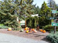 ハローウィンの飾り付けが可愛い真鍋庭園~10月の帯広 - My favorite ~Diary 3~