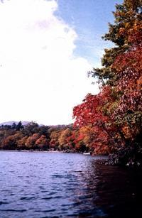 昭和39年10月 - LUZの熊野古道案内