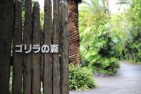 【上野動物園】part 2 - うろ子とカメラ。