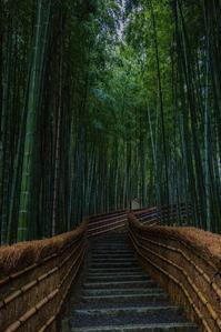 化野念仏寺 - 鏡花水月