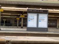バカンスシーズンのParis Gare de Lyon駅のタクシー乗り場について - おフランスの魅力