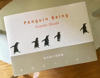 福岡のペンギン好きの方に朗報 - ジャズトランペットプレイヤー河村貴之 丸出しブログ