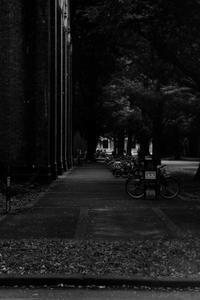 駐輪場 - 散歩と写真