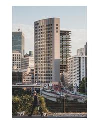 Daily routine - ♉ mototaurus photography