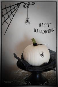 白いかぼちゃ - purebliss
