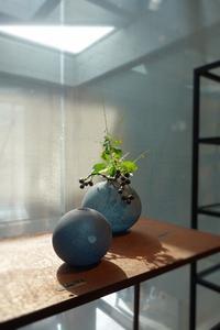 津田清和 glass exhibition開催中です - 工房IKUKOの日々