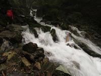 ツノハシバミ採取&茸採山PartⅠ【奈良】 10/26 - 静かなお山の森歩き~♪