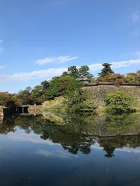 松江城 - おうちやさい