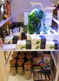 『室内で新鮮な野菜やハーブを育てる』のは世界的なトレンドかも? - ニューヨークの遊び方