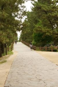 草加へ行こう。(埼玉県へ行こう。) - 僕の足跡