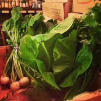 島中農園の野菜が入荷しています。 - Nadja*  bar a vin.