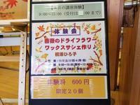 見晴公園だよりMOMIーGフェスタ体験会11/2 - 函館市住宅都市施設公社 スタッフブログ
