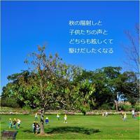 陽射し - m*photopoem