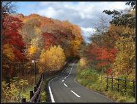 一人で「晩秋の紅葉ツアー」 - 好い加減に過ごす2