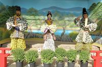 菊の花は11月10日からが見頃(湯島天神菊まつり) - 旅プラスの日記