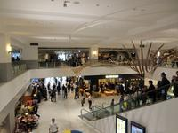 【10月31日にオープンした横浜ハンマーヘッド旅客船ターミナルに入ってみました】 - お散歩アルバム・・寒中の静寂