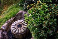秋のはじまり(泉涌寺塔頭・雲龍院) - 花景色-K.W.C. PhotoBlog