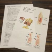 姿勢、歩き方改善竹島ウォーキングワークショップ報告 - ナチュラル キッチン せさみ & ヒーリングルーム セサミ