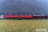 中川羽前中山1980年(昭和55年) - 懐可視画像庫