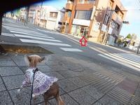 チャイクレオフ会 - 毎日笑顔♪ 裸犬☆温・真珠・絆愛Ⅱ