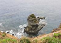 八重山諸島~探鳥~与那国島編 ① - なんでもブログ