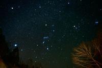 オリオン~星を撮ってみた! - やぁやぁ。