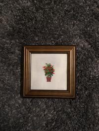 フレメ   鉢植え - いとの色