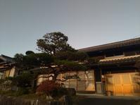 新規のお客様 - 石松苑/SEKISHOUEN