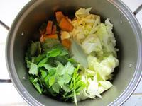 毎日野菜スープ続いているよ! - Bのページ