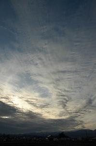 稲の種まきした日は、一粒万倍日だけど種まき凶日だった。 - 空ヤ畑ノコトバカリ
