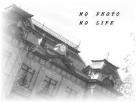 Sea  Lion! - LAGOMな……PHOTO   LIFE !