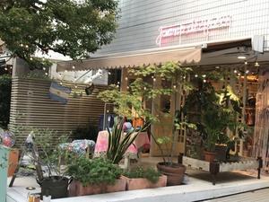青参道のホォアナ デ  アルコ - 青山ぱせり日記