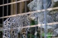 フク通信58(9月まとめ) - 動物園に嵌り中2