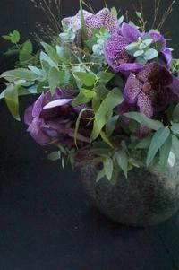 美しきバンダ蘭ディープスポット♪ - お花に囲まれて