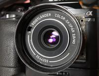 COLOR-SKOPAR 2.8 40mm ちょっと区役所までぶらり - 写真機持って街歩き、クラシックカメラとレンズを伴に