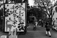 最後の収穫祭 - TOSが行く~徒然なるままの撮影記録~